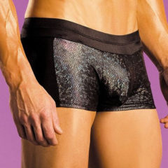 Fantasy Lingerie Excite Hologram Shorts